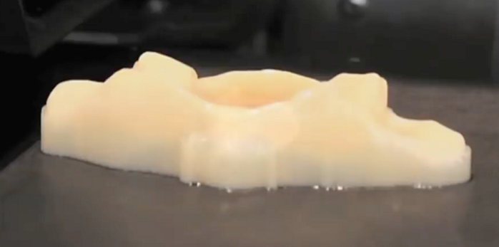 3D Printed Biotissue (Heart Valves) at Henry Ford Innovation Institute