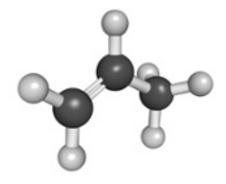 Polypropylene Molecular Composition