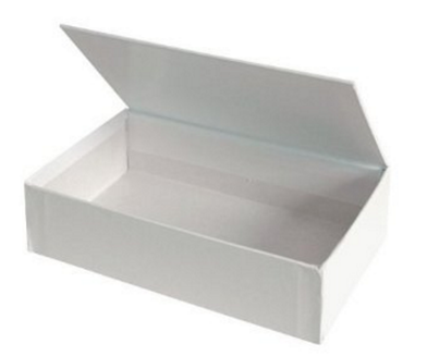 Paper box with living hinge